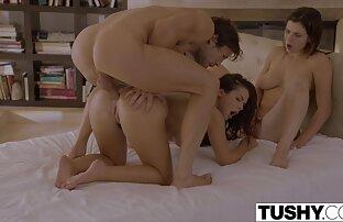 सह में सभी हिंदी सेक्सी मूवी वीडियो सेक्स